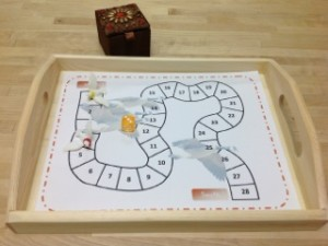 Migration Game- Montessori