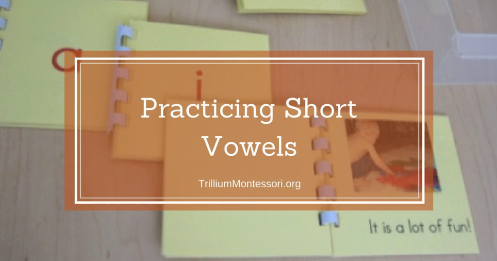 Short Vowels: How Much is Enough Practice?
