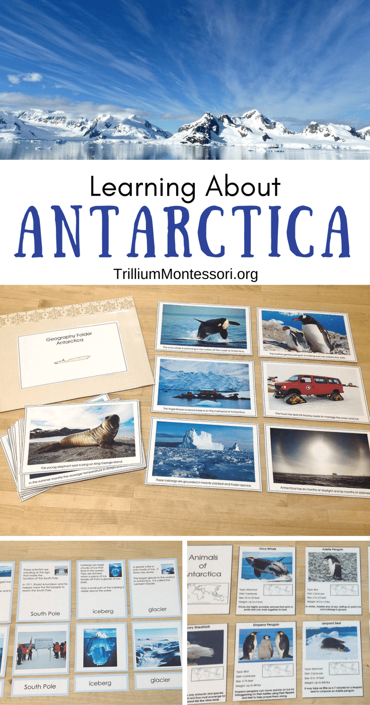 Preschool and Montessori activities for learning about Antarctica
