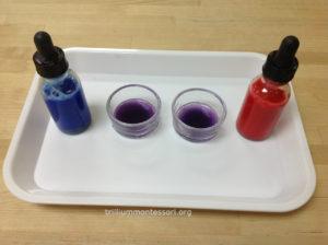 Indigo and Violet Color Mixing- Trillium Montessori