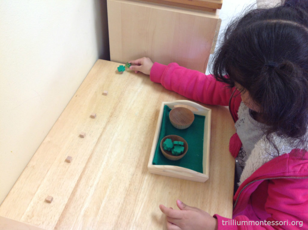 Balancing Shamrocks Trillium Montessori