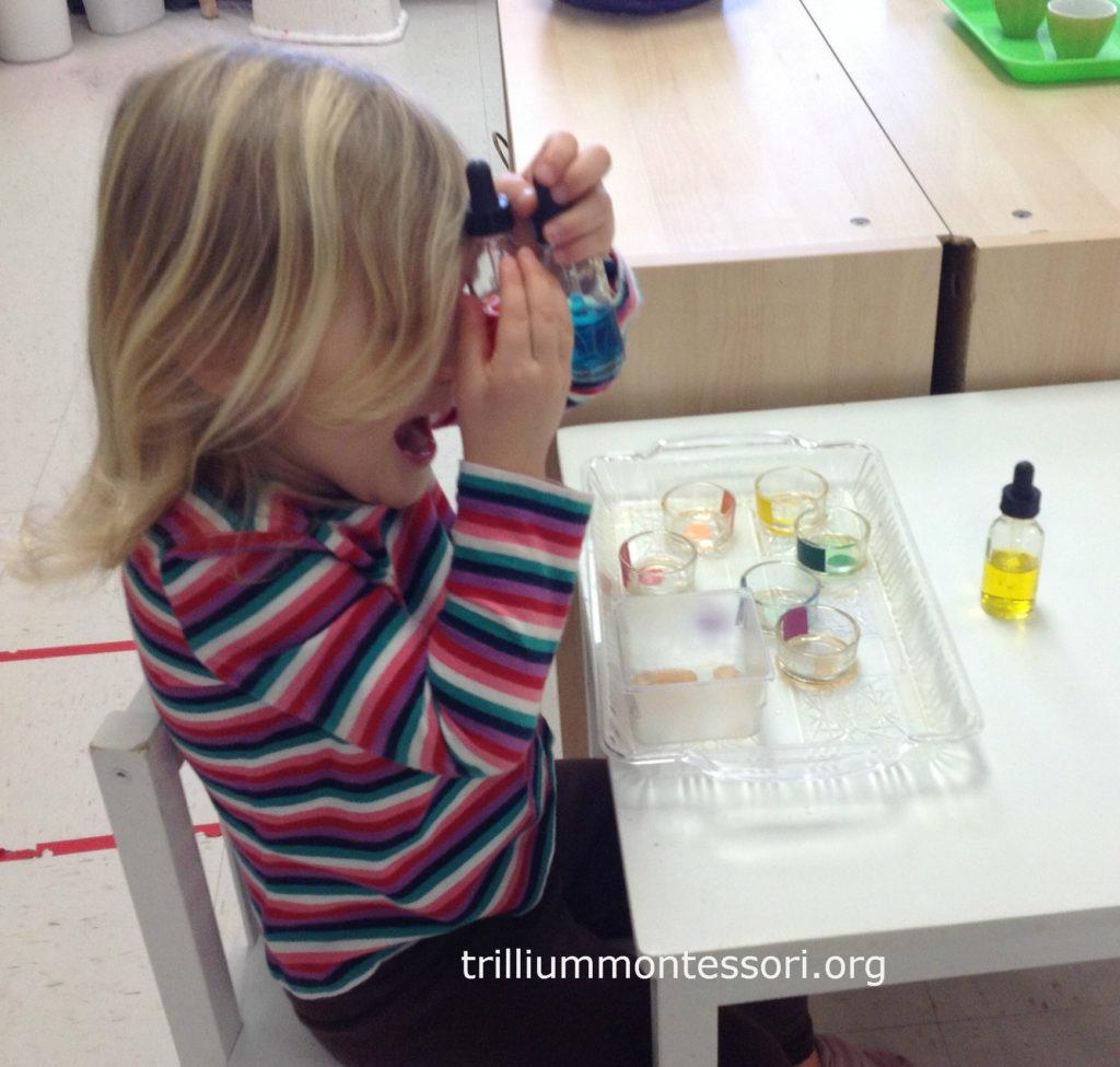 Color Mixing- Trillium Montes