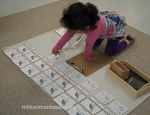 kangaroo booklet Trillium Montessori