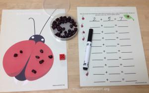 Roll A Dot Ladybug Addition at Trillium Montessori
