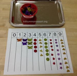 Count and Glue bugs at Trillium Montessori