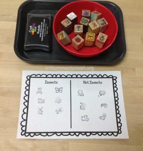 Stamps- sorting insects/not-insects at Trillium Montessori