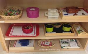 Bug Theme Pre-Literacy Shelf at Trillium Montessori