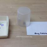 Classroom bug catcher at Trillium Montessori