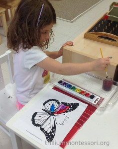 Wet on wet watercolor butterfly at Trillium Montessori