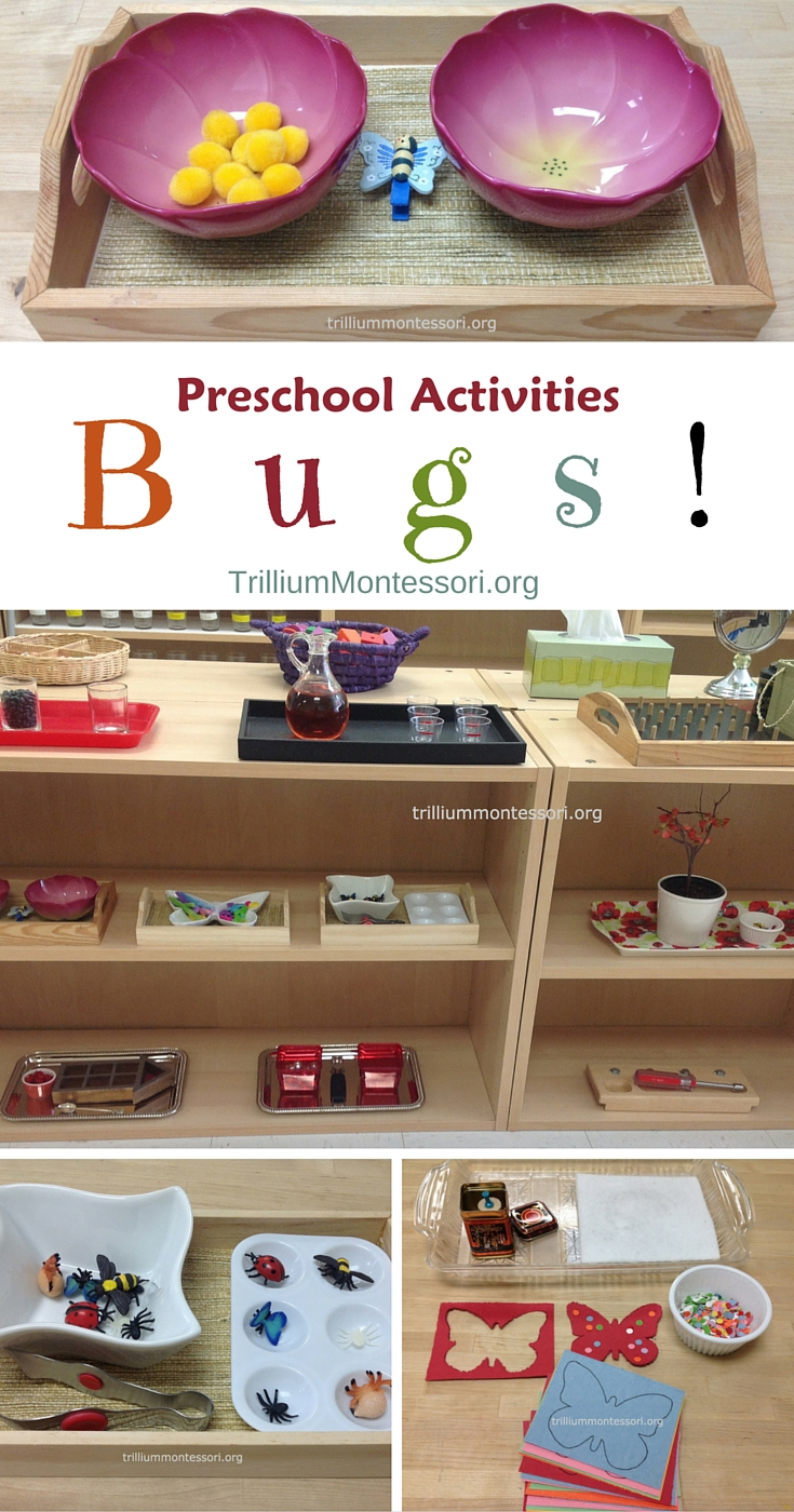 Bugs fine motor and art activities on the montessori shelf for Fine motor activities for kindergarten
