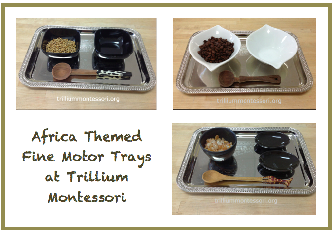 Africa Themed FIne Motor Trays at Trillium Montessori