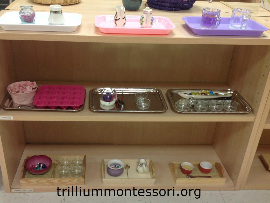 Flower Activities for Montessori or a Preschool Unit