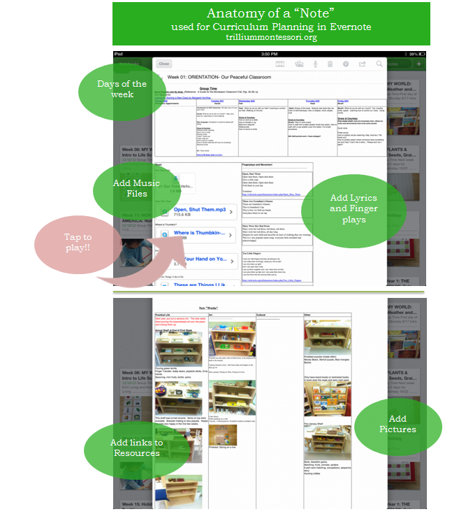 Anatomy of an Evernote Note for Curriculum Planning - Trillium Montessori