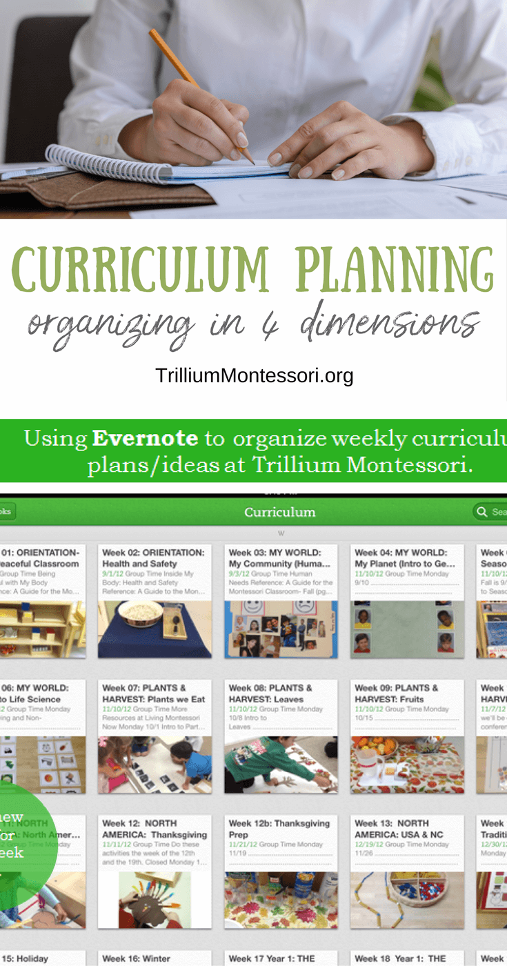 Organizing in 4 Dimensions: Montessori Curriculum Planning