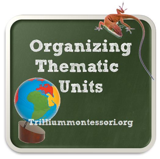 Organizing Thematic Units
