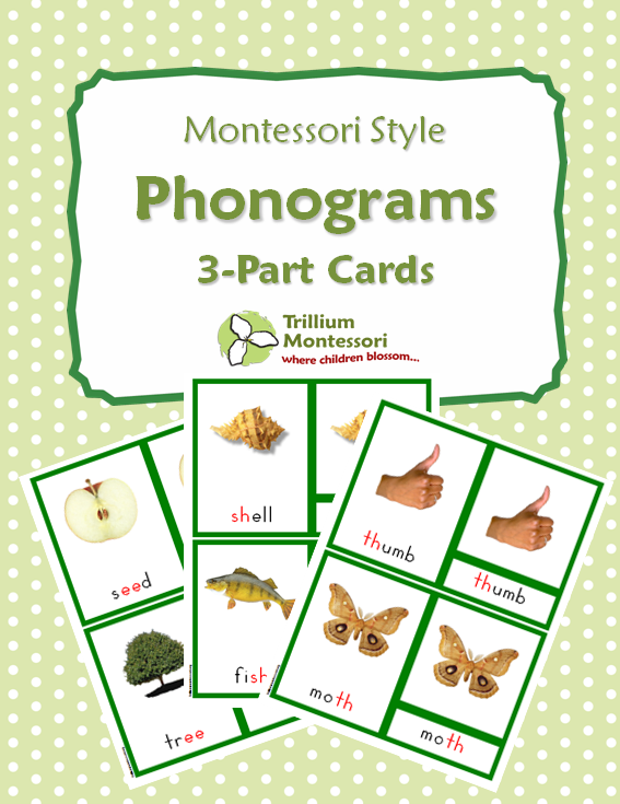 Phonograms 3 Part Cards Trillium Montessori