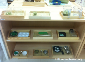 Fine Motor Shelf with green contents