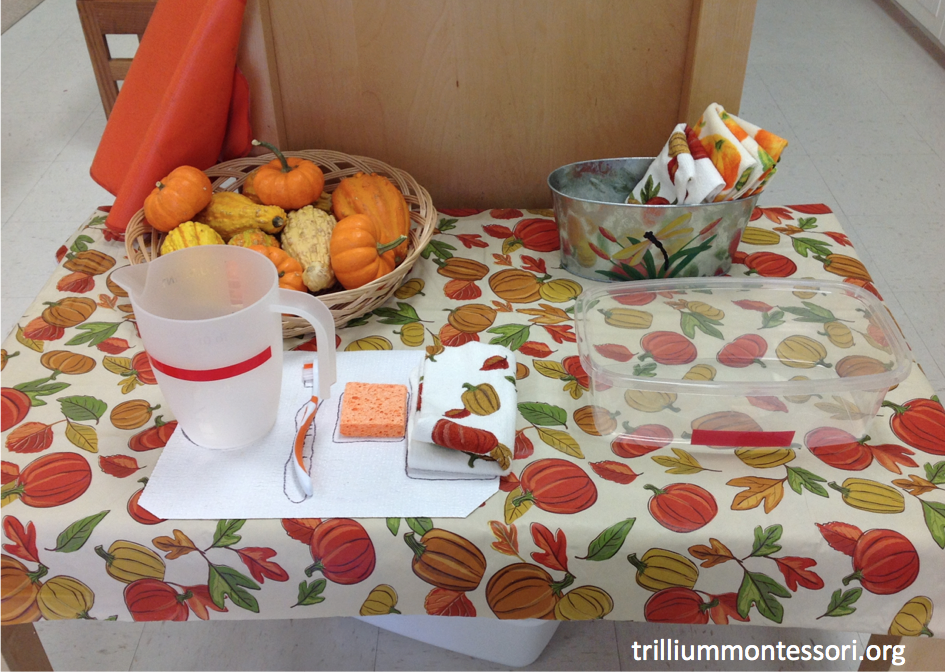 October Gourd Pumpkin Washing Montessori Practical Life