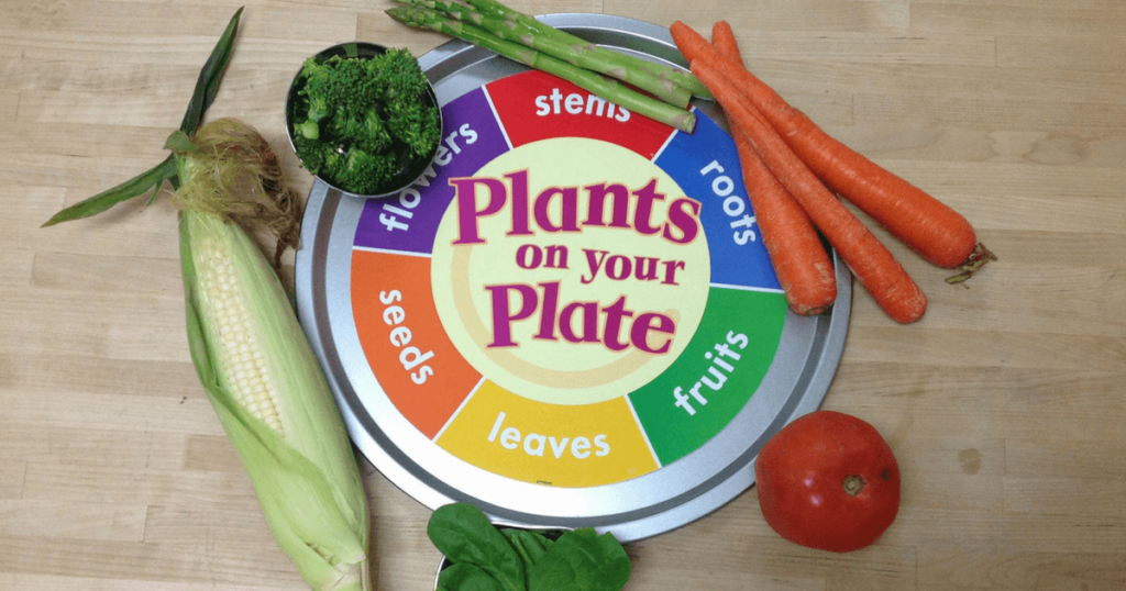 Parts of a Plants We Eat