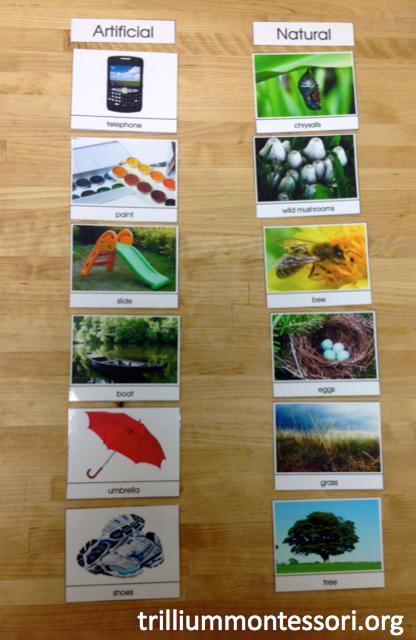 Artificial Natural Cards