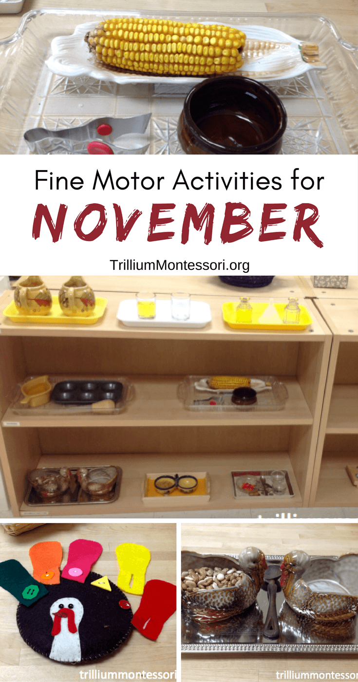 Preschool and fine motor activities for November and fall theme
