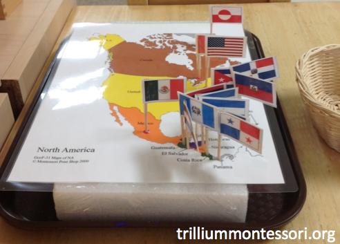North America Pin Map