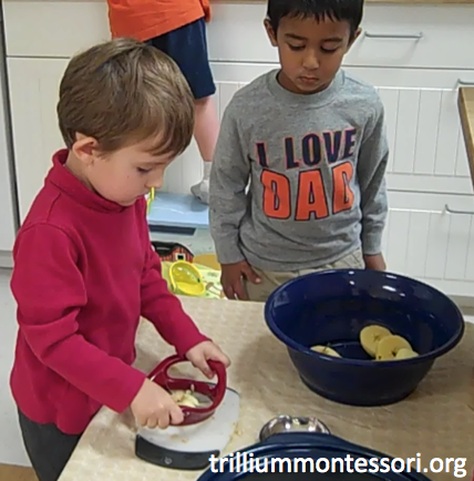 Preschool Thanksgiving Feast- Cutting Apples