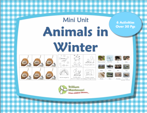Animals in Winter Printables Pack