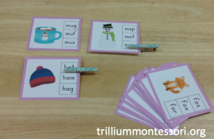 January- Phonics and Literacy- CVC Whats the Correct Word