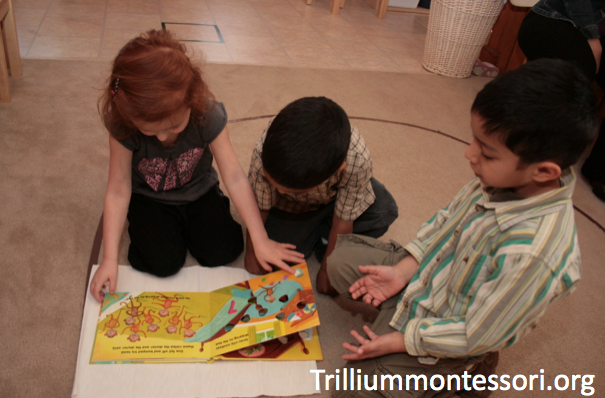 describe what montessori meant by new The term curriculum is often used to describe only the goals,  what is meant by the term curriculum maryusen says:  notify me of new posts via email.