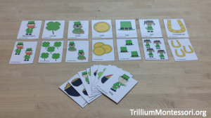 St Patricks Day Singular and Plural Vocabulary and Sorting Cards
