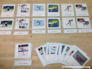 Winter Olympics- 3-Part Phot Cards of the 15 Sports