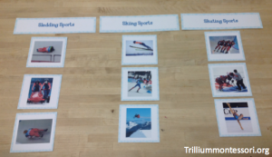 Winter Olympics- Sorting Sports