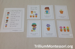 In the Garden Poem and Sequencing Cards