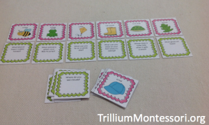 Spring Theme Question Cards