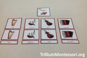 Europe Instruments 3 Part Cards