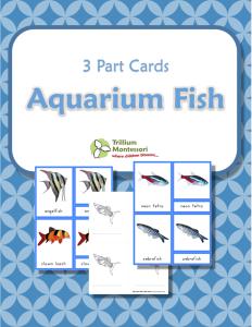 Aquarium Fish 3 Part Cards