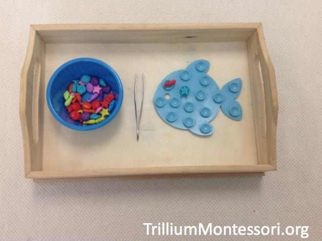 Summer Themed Activities For Preschoolers