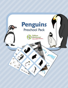 Penguins Preschool Pack