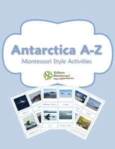 1 Antarctica Montessori Activities Printable Pack