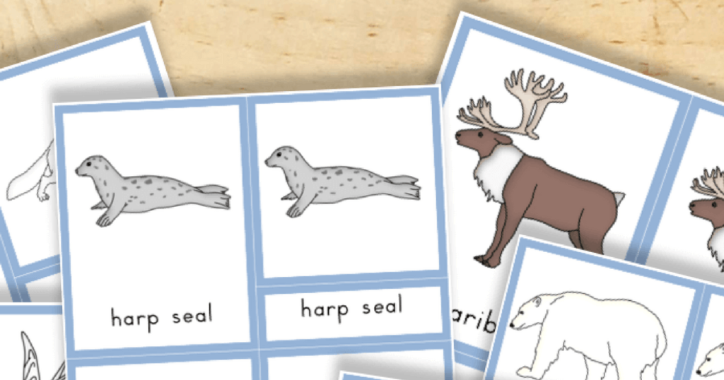 Free Printable: Arctic Animals