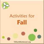 Activities for Fall  at Trillium Montessori