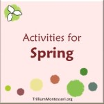 Activities for Spring at Trillium Montessori