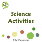 Science Activities at Trillium Montessori
