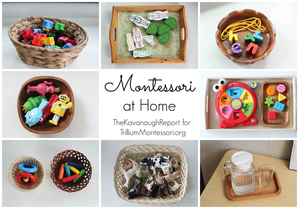 Montessori at Home Kavanaugh Report