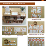 Ideas for Phonological Awareness Activities