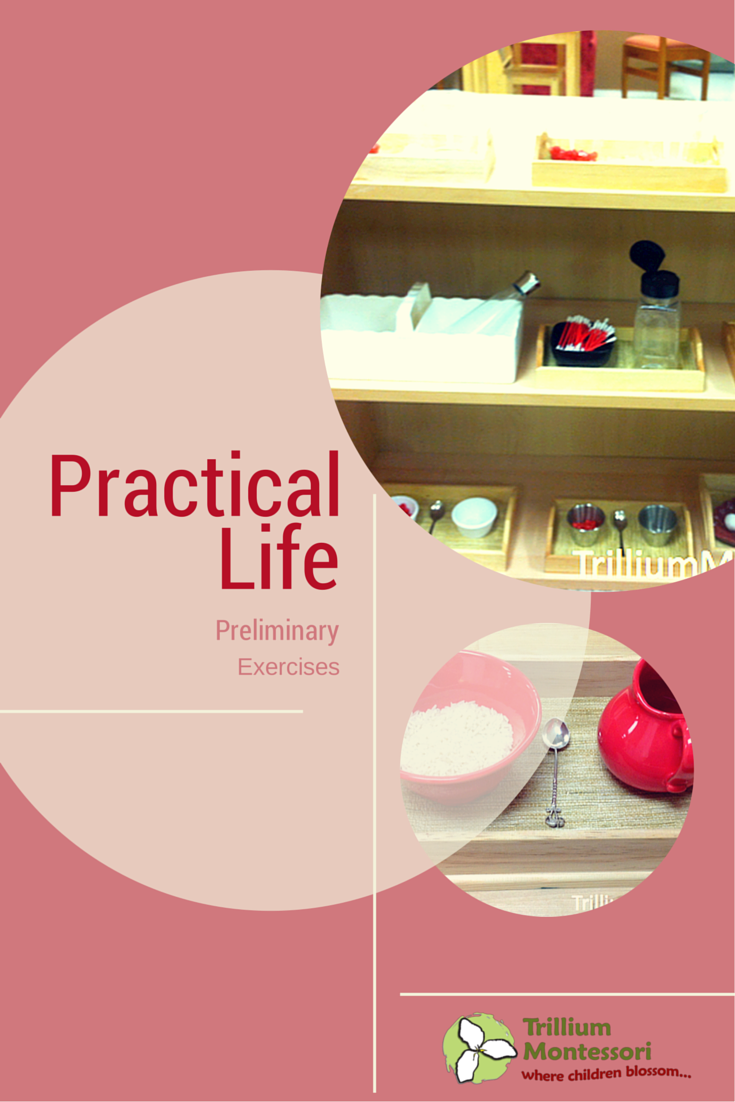 montessori practical life Such as with the practical life materials this means that though montessori's sensorial materials, abstract concepts are made into concrete materials.