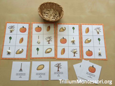 Pumpkin Patch Phonological Awareness Ending Sounds I Spy Bingo