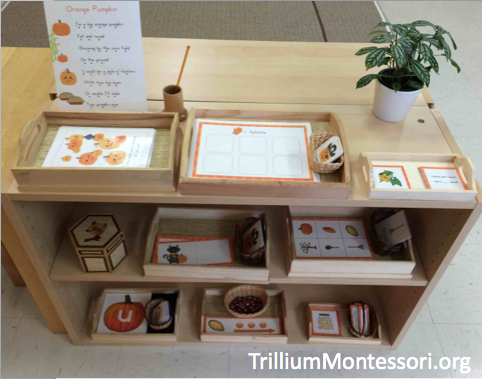 Pumpkin Patch Phonological Awareness Shelf in a Montessori Classroom