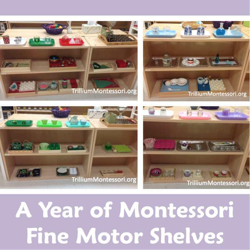 A year of montessori fine motor shelves trillium montessori for Montessori fine motor skills